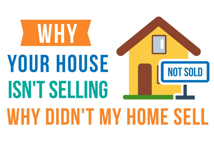 Houses are getting back on the market!